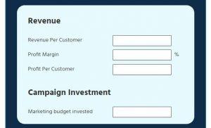 RoI Calculator revenue and campaign investment